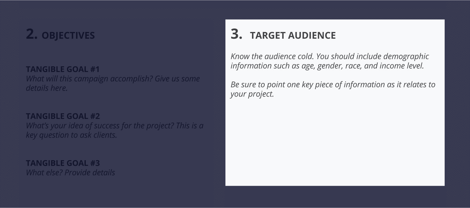 The Best Creative Brief Template For Video Agencies [Free Download] - Section 3 - Target audience